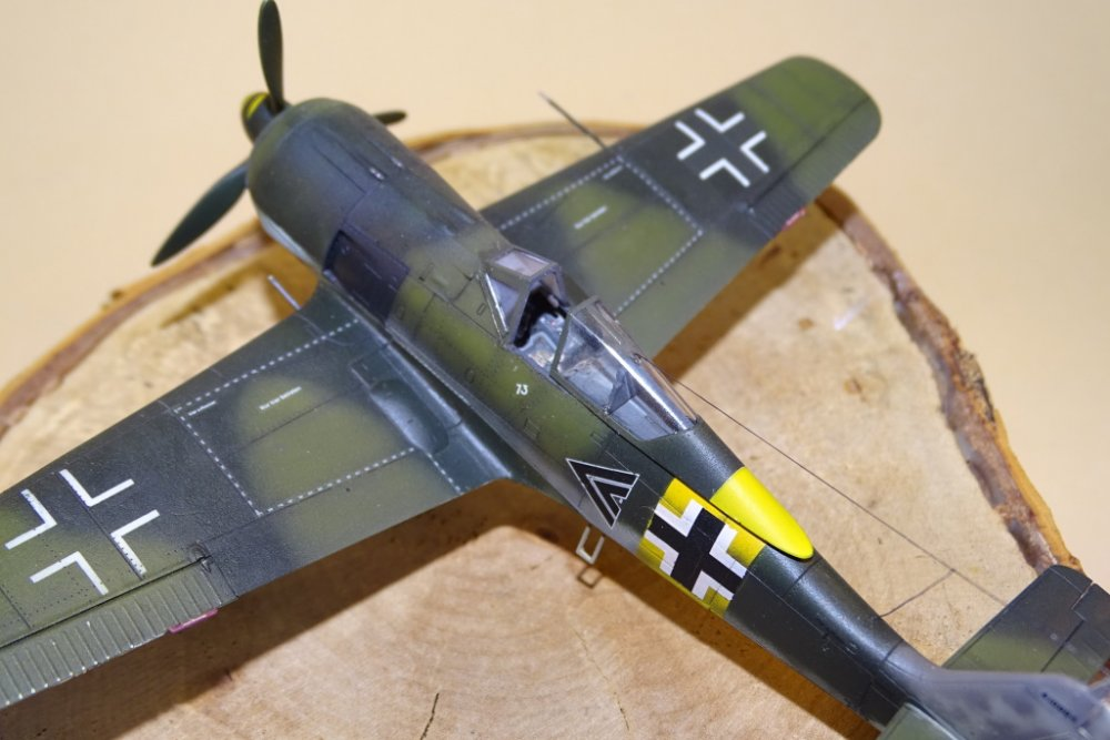 Fw_190_A-5_Nowotny_001.jpg