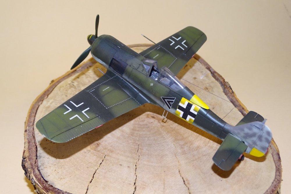 Fw_190_A-5_Nowotny_002.jpg