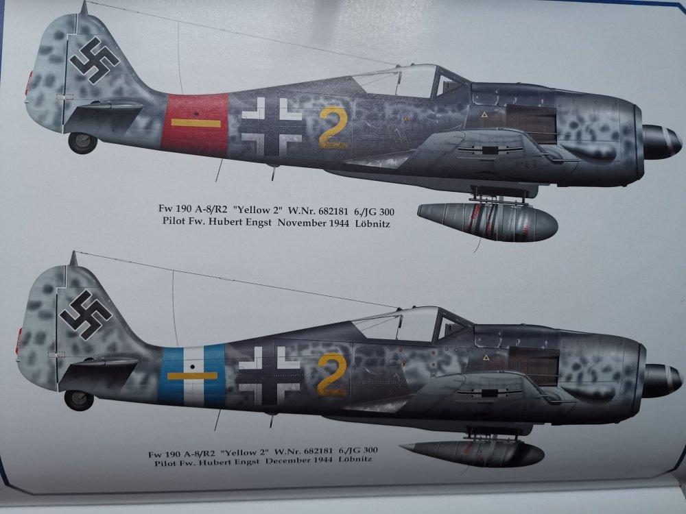 Hubert-Engst-Fw-190A8.thumb.jpg.7a37b149dec232ab26fd8d973d75925c.jpg