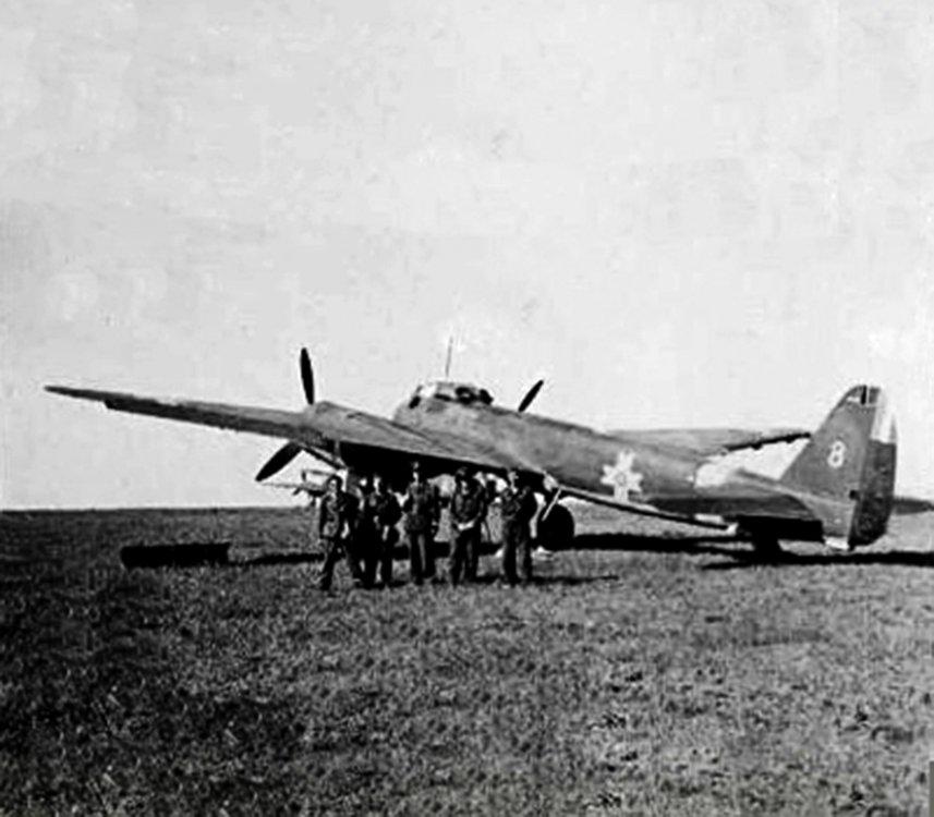 Junkers-Ju-88D1-RRAF-2-Long-Range-Recon-Sqn-8-Russia-June-1943-01.jpg