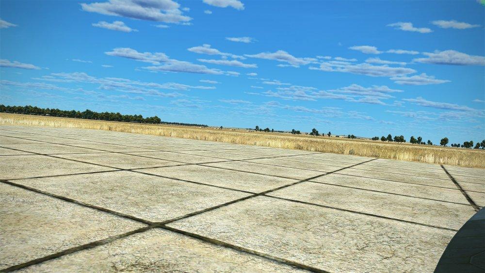 300-grass.jpg
