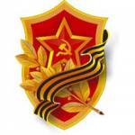 Soviet P-40 lands with half... - last post by Mastermariner