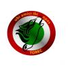 Torec19