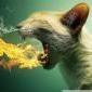 Cat_Astrophe